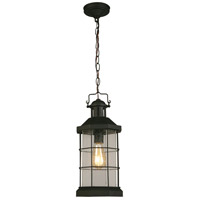 Eglo 202798A San Mateo Creek 1 Light 8 inch Matte Black Outdoor Pendant