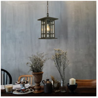 Eglo 202891A Arlington Creek 1 Light 9 inch Matte Bronze Outdoor Pendant alternative photo thumbnail