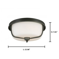 Eglo 202907A Mayview 3 Light 16 inch Graphite Flush Mount Ceiling Light alternative photo thumbnail
