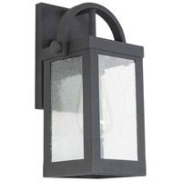 Eglo 203103A Cider Mill 1 Light 12 inch Matte Black Outdoor Wall Light