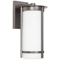 Eglo 203112A Truxton 1 Light 14 inch Graphite Outdoor Wall Light