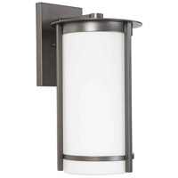 Eglo 203114A Truxton 1 Light 16 inch Graphite Outdoor Wall Light