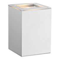 Eglo Tabo 1 Light Outdoor Wall Light in Silver 88099A