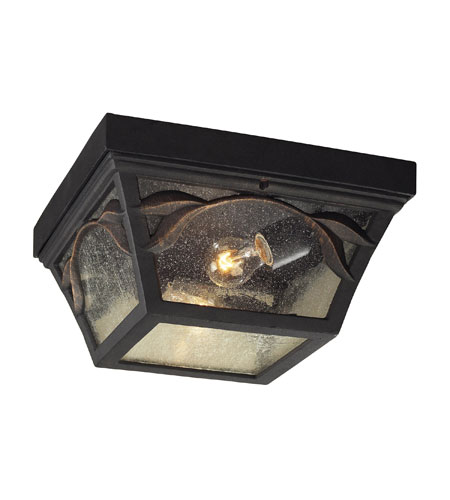 ELK Lighting Hamilton Park 2 Light Outdoor Flushmount in Weathered Charcoal 42046/2 photo