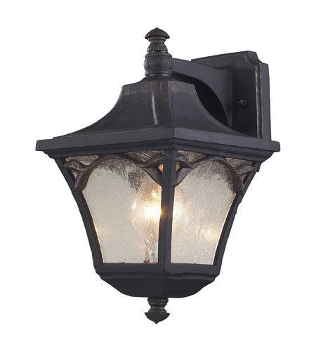 ELK Lighting Hamilton Park 1 Light Outdoor Sconce in Weathered Charcoal 42047/1 photo