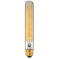 ELK 1099 Filament Bulbs Clear/Gold Bulb - Lighting Accessory