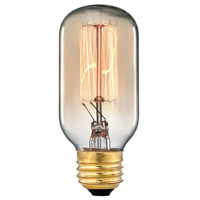 Signature A19 E26 Medium 60 watt Filament Bulb