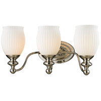 Park Ridge 3 Light 19 inch Polished Nickel Vanity Light Wall Light in Incandescent