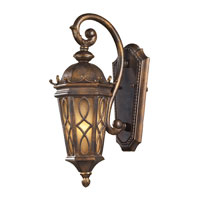 Burlington Junction 1 Light 18 inch Hazelnut Bronze Outdoor Sconce in Standard