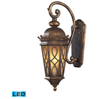 ELK Lighting Burlington Junction 2 Light LED Outdoor Wall Sconce in Hazlenut Bronze 42001/2-LED