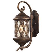 Barrington Gate 1 Light 18 inch Hazelnut Bronze Outdoor Wall Sconce