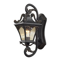 ELK Lighting Hamilton Park 1 Light Outdoor Sconce in Weathered Charcoal 42040/1