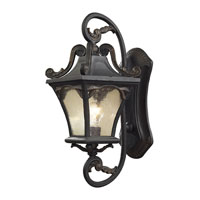 ELK Lighting Hamilton Park 1 Light Outdoor Sconce in Weathered Charcoal 42041/1