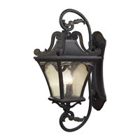 Hamilton Park 5 Light 41 inch Weathered Charcoal Outdoor Sconce