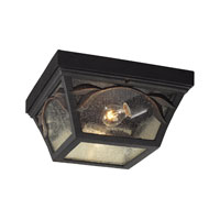 ELK Lighting Hamilton Park 2 Light Outdoor Flushmount in Weathered Charcoal 42046/2 photo thumbnail