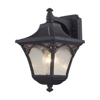 ELK Lighting Hamilton Park 1 Light Outdoor Sconce in Weathered Charcoal 42047/1 photo thumbnail