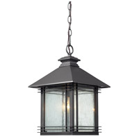 ELK Lighting Blackwell 1 Light Outdoor Pendant in Graphite 42303/1