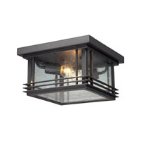 ELK Lighting Blackwell 2 Light Outdoor Flushmount in Graphite 42306/2