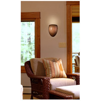 ELK Lighting Arco Baleno 1 Light Sconce in Satin Nickel 426-1C alternative photo thumbnail