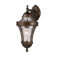 ELK Lighting Towson 1 Light Outdoor Sconce in Hazelnut Bronze 43012/1