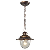 ELK Lighting Searsport 1 Light Outdoor Hanging Lantern in Regal Bronze 45031/1