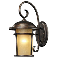 ELK Lighting Bolla Vista 1 Light Outdoor Wall Sconce in Regal Bronze 45036/1