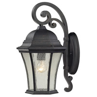 ELK Lighting Wellington Park 1 Light Outdoor Wall Sconce in Weathered Charcoal 45051/1