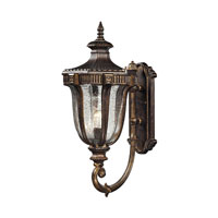 ELK Lighting Sturgess Castle 1 Light Outdoor Wall Sconce in Regal Bronze 45061/1