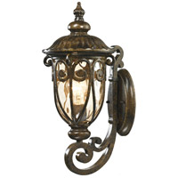 Logansport 1 Light 18 inch Hazelnut Bronze Outdoor Wall Sconce