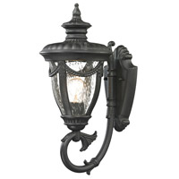 ELK Lighting Anise 1 Light Outdoor Wall Sconce in Textured Matte Black 45075/1