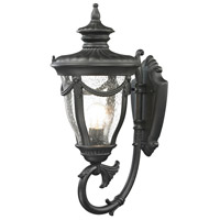 ELK 45076/1 Anise 1 Light 22 inch Textured Matte Black Outdoor Wall Sconce