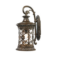 Orlean 1 Light 24 inch Hazelnut Bronze Outdoor Wall Sconce