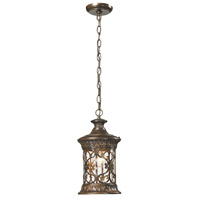 Orlean 1 Light 7 inch Hazelnut Bronze Outdoor Pendant