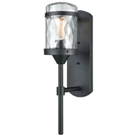 Torch 1 Light 21 inch Charcoal Black Outdoor Sconce