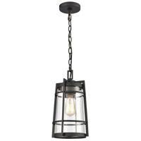 ELK 45493/1 Crofton 8 inch Charcoal Outdoor Hanging Light