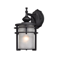 ELK Lighting Meadowview 1 Light Outdoor Sconce in Matte Black with Frosted Glass 46250/1
