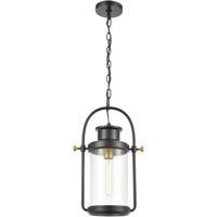 ELK 46672/1 Wexford 1 Light 12 inch Matte Black/Brushed Brass Outdoor Hanging Light