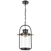 ELK 46672/1 Wexford 1 Light 12 inch Matte Black with Brushed Brass Outdoor Hanging