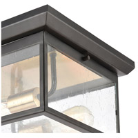 ELK 46683/2 Knowlton 2 Light 12 inch Matte Black with Brushed Brass Outdoor Flush Mount alternative photo thumbnail