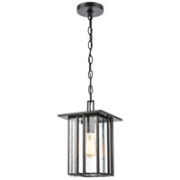 ELK 46693/1 Radnor 1 Light 8 inch Matte Black Outdoor Hanging Light