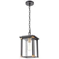 Vincentown 1 Light 8 inch Matte Black with Brushed Brass Outdoor Hanging Lantern