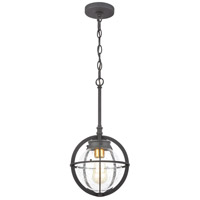Davenport 1 Light 9 inch Charcoal with Brushed Brass Outdoor Hanging Lantern