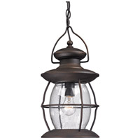 Village Lantern 1 Light 8 inch Weathered Charcoal Outdoor Pendant