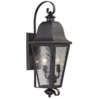 Forged Brookridge 2 Light 24 inch Charcoal Outdoor Wall Sconce