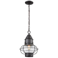 Onion 1 Light 10 inch Oil Rubbed Bronze Outdoor Pendant