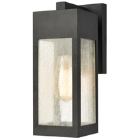 ELK 57300/1 Angus 13 inch Charcoal Outdoor Sconce