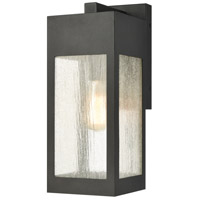 ELK 57301/1 Angus 17 inch Charcoal Outdoor Sconce