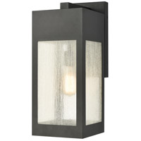 ELK 57302/1 Angus 20 inch Charcoal Outdoor Sconce