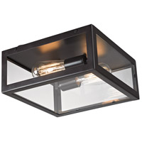 Parameters 2 Light 12 inch Bronze Flush Mount Ceiling Light