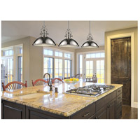 Chadwick 1 Light 17 Inch Polished Nickel Pendant Ceiling In Incandescent